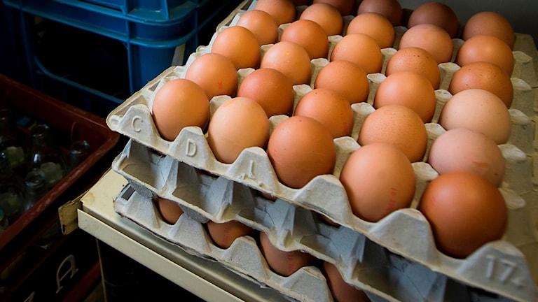 En kartong med ägg