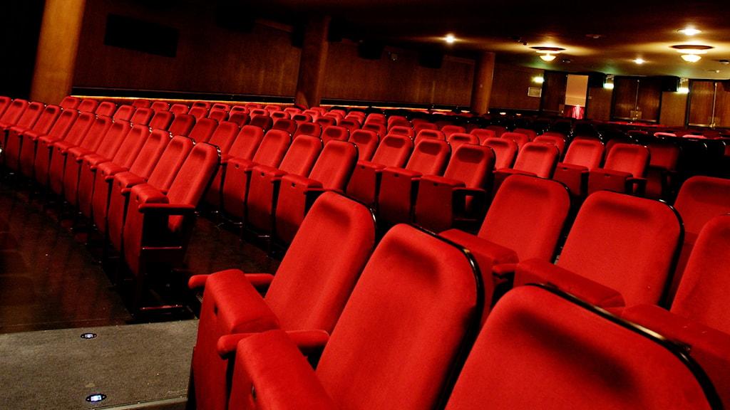 biograf stolar