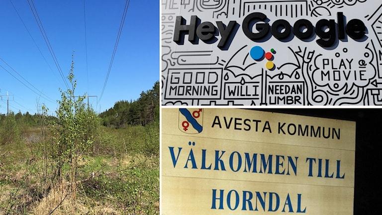 Googles mark i Horndal