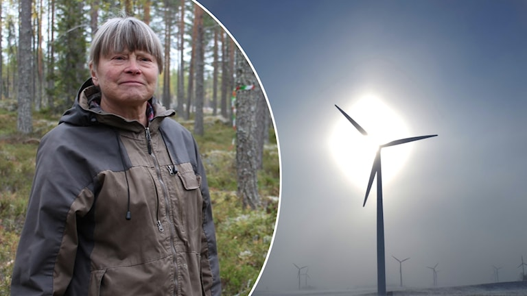 Margareta Wikström från Naturskyddsföreningen i Rättvik och ett vindkraftverk.