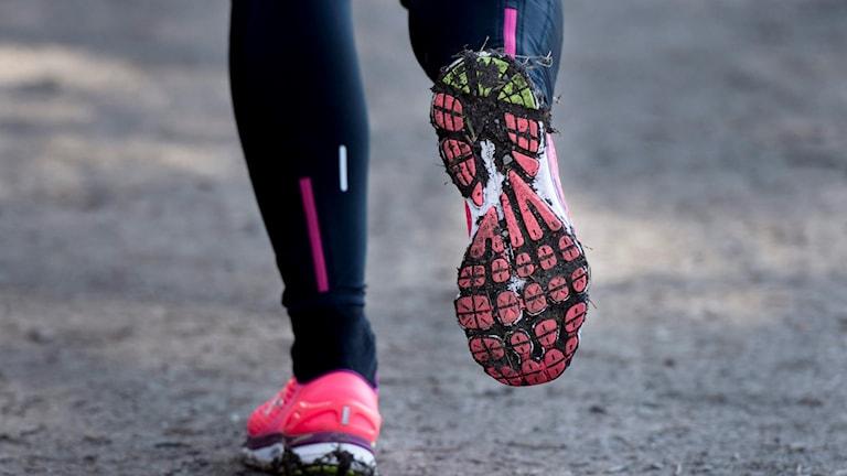 Närbild på fötter i träningstights och rosa skor som springer