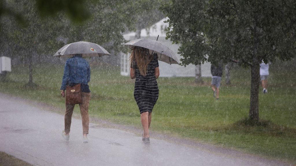Två personer går i ösregn med paraplyer.