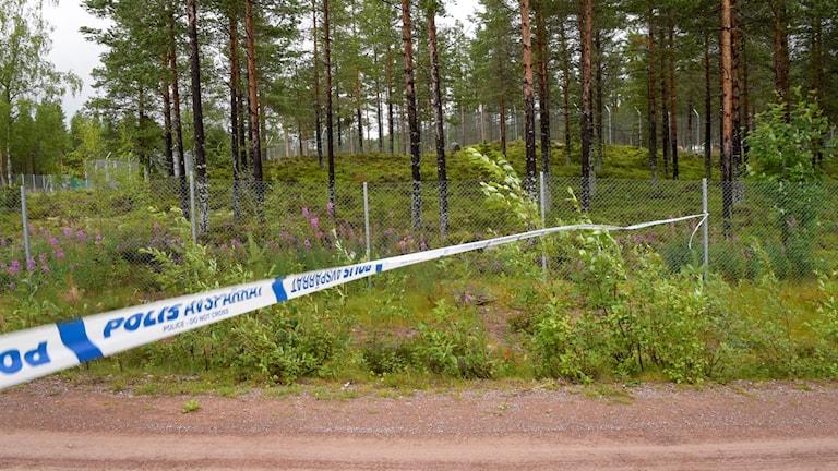 Polisens avspärrningsband vid platsen där en djurskötare dödades av en björn