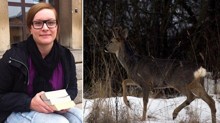 En bild på Mikaela Malm som sitter på radiohuset i Faluns trappa. En annan bild på ett rådjur ute i skogen.