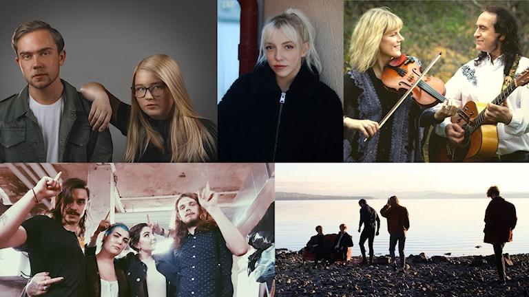 Samtliga artister och band som tävlar i dalafinalen av P4 Nästa.