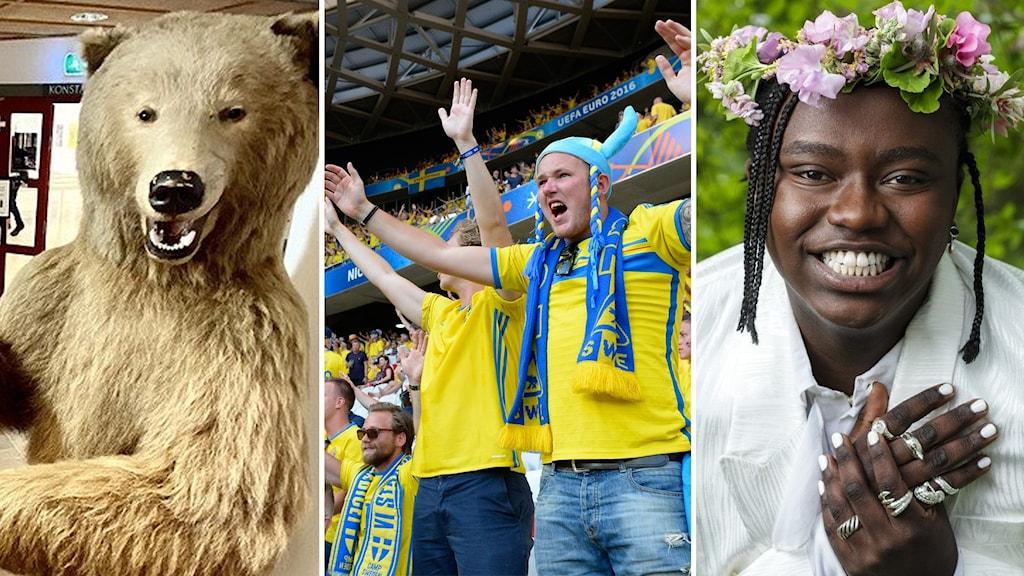 Veckans dikt, rättviksbjörnen, fotbolls-Em, tusse