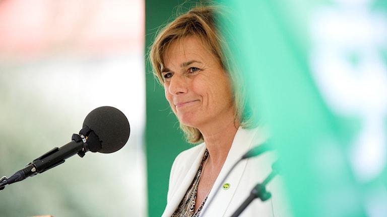 Isabella Lövin (MP) sommartalade i Avesta.