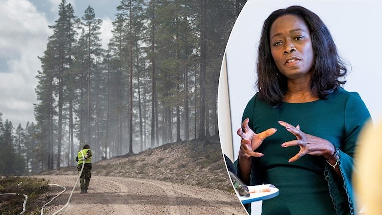 Någon drar en brandslang över en skogsväg. Det ryker från träden. Nyamko Sabuni står på en presskonferens och har händerna framför kroppen.