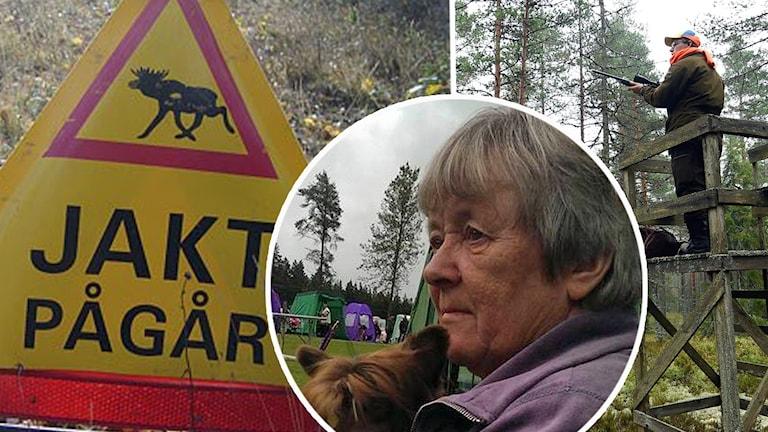 En skylt om att jakt pågår och en jägare på pass samt en kvinna som vill se fler skyltar.