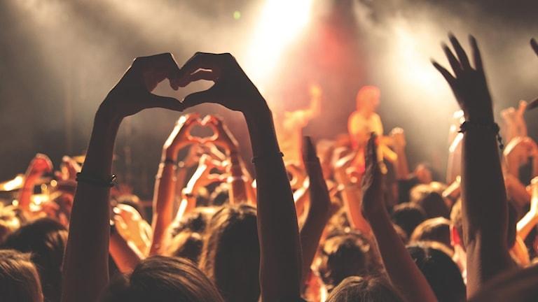 publik, konsert