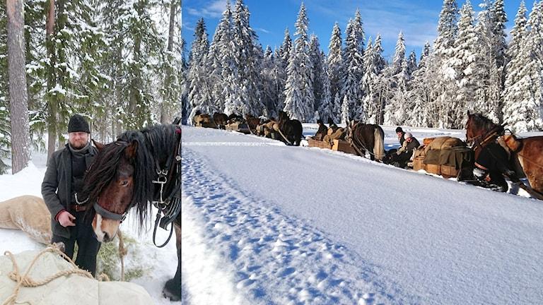 Sigurd Svendsen är forman för turen som går med häst och släde från Siljansfors till Röros.