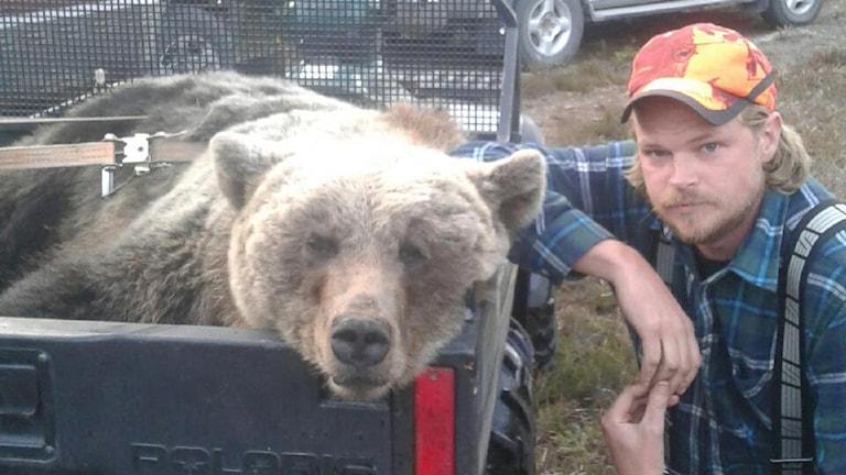 En död björn och Kent