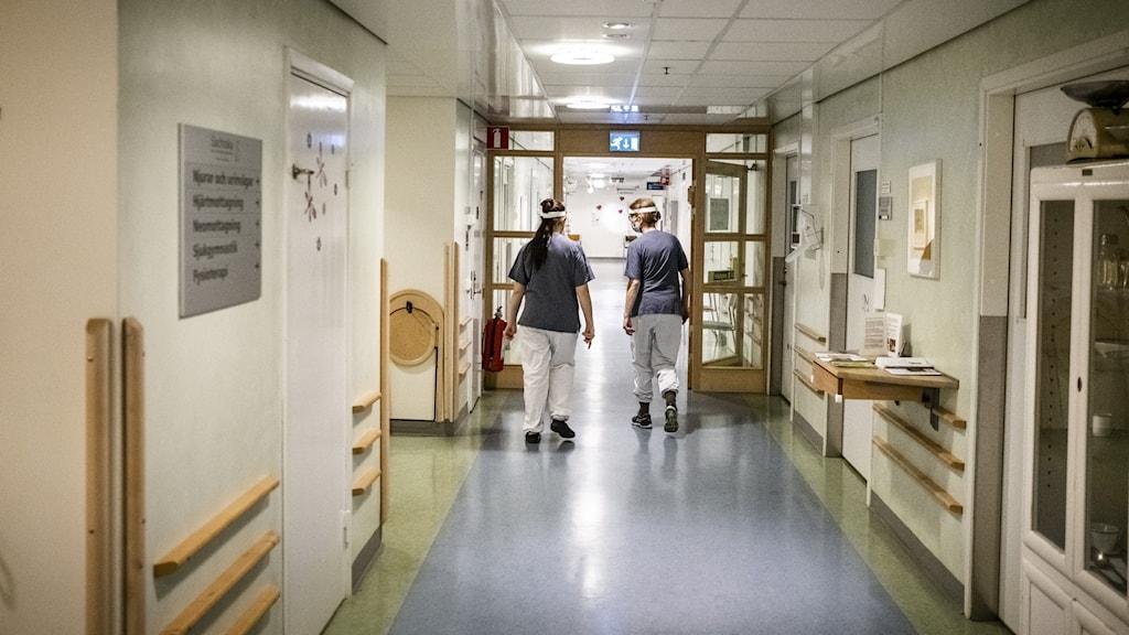 Högskolan Dalarna - Sidhuvud