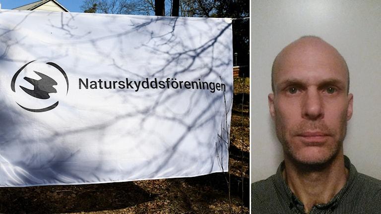 Naturskyddsföreningen, Mattias Ahlstedt