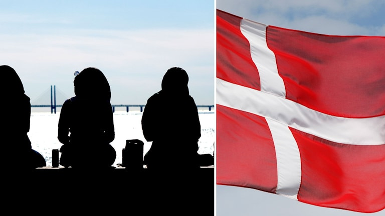 Delad bild på ungdomar med Öresundsbron i bakgrunden och en Danmarks flagga