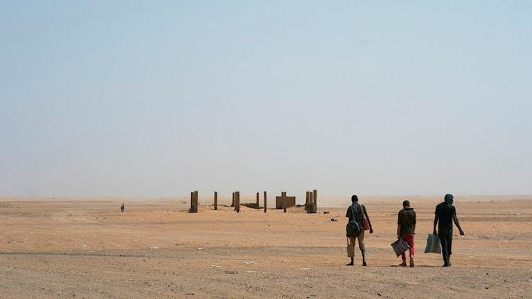 Flyktingar Sahara.