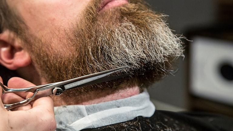 Barberare.
