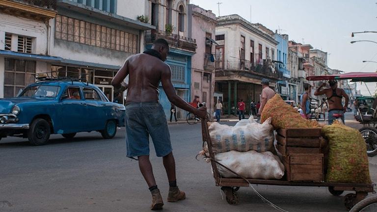 Idag är entreprenör det stora modeordet bland kubaner. Privata företag är på väg att bli motorn i landets ekonomi.