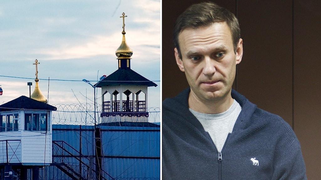 Arkiv – Fängelset IK-2 i Pokrov i Ryssland och Aleksej Navalnyj i rätten.