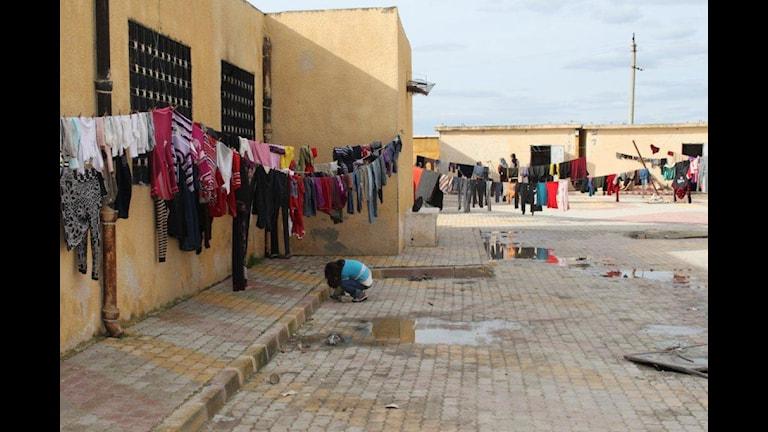 Bilderna föreställer, förstört bostadhus, provisorisk skola i provisorisk flyktingförläggning,