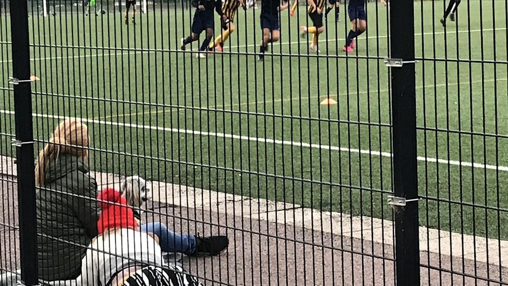En kvinna sitter vid sidan av en fotbollsplan och tittar på en match. Foto: Ola Finell/Sveriges Radio.