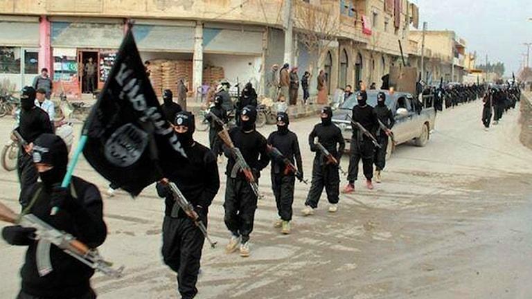 De senaste veckorna har det varit hårda strider mellan ISIS och andra rebellgrupper. Foto: TT.