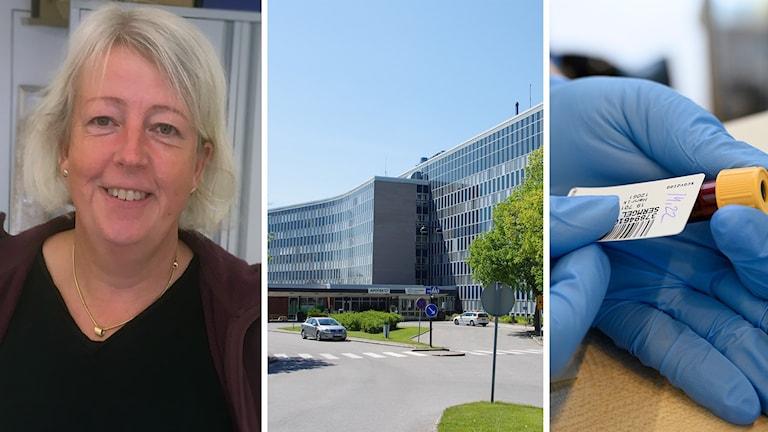 Lena Serrander är docent, överläkare och specialistläkare i infektionssjukdomar och klinisk mikrobiologi.