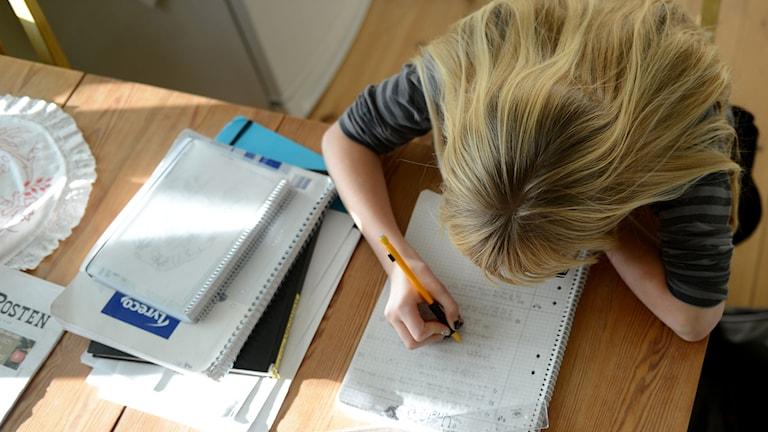 En flicka gör hemläxor. Foto: Fredrik Sandberg/TT