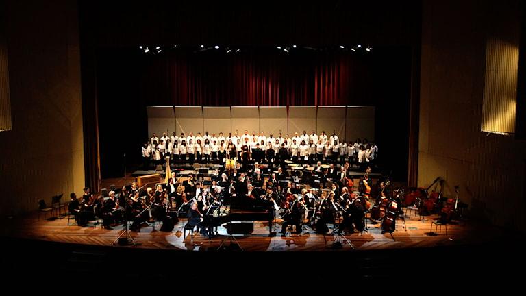 Orkester. Foto: TT