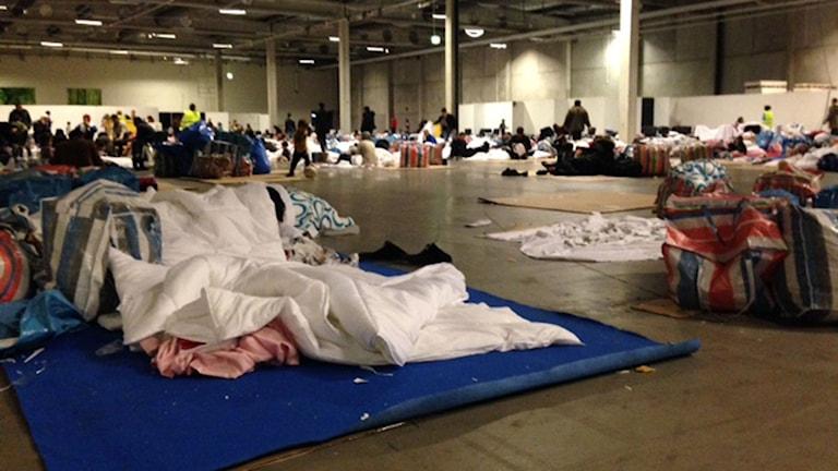 Malmömässans lokaler används som sovplatser för asylsökande. Foto: Josefin Modig/Sveriges Radio.