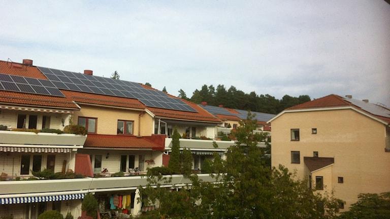 Solpaneler på hustak