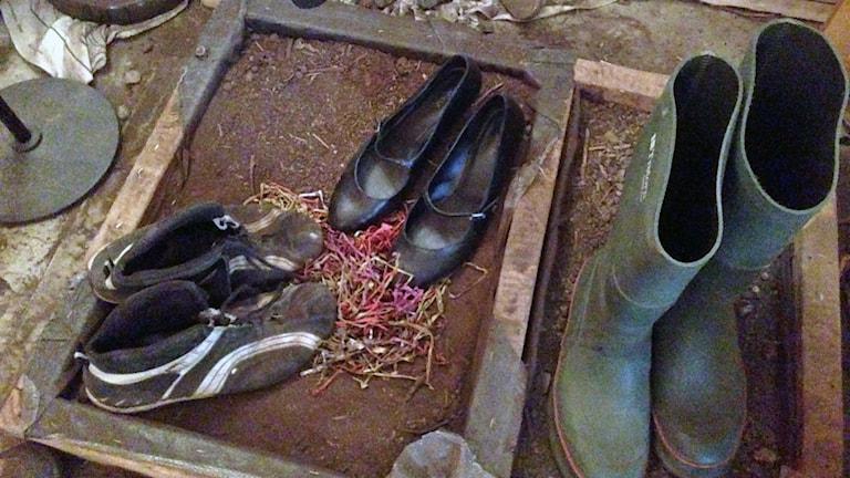 två par skor på ladugårdsgolv och ett par gröna stövlar på det samma