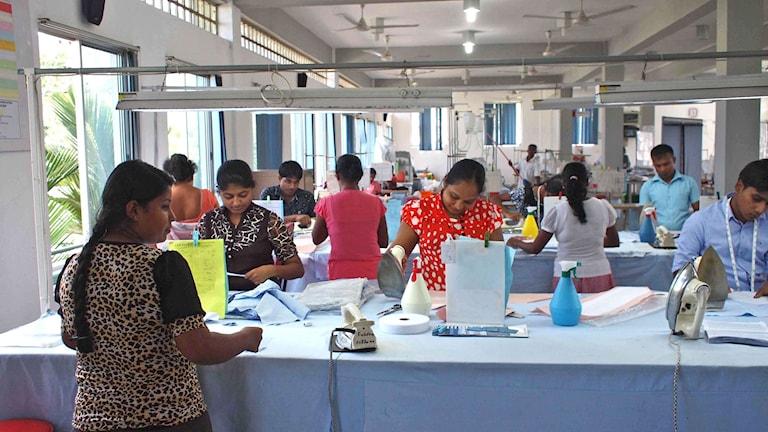 Skräddarna på klädfabriken in Alaawa, Sri Lanka
