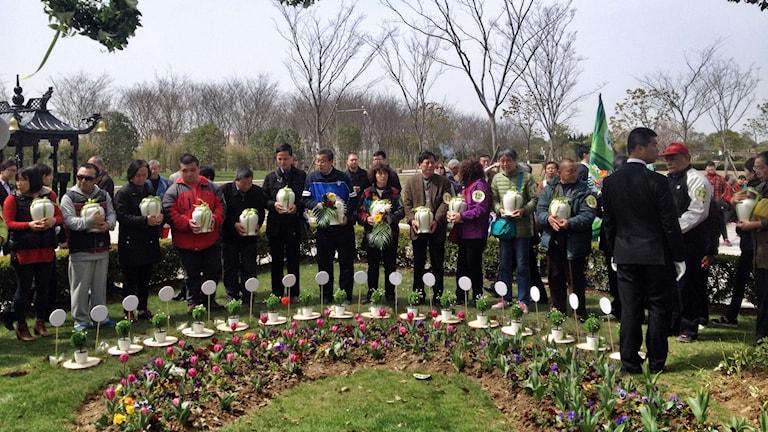 Urnbegravning för 52 personer i Shanghai enligt de nya direktiven för att spara mark i Kina.