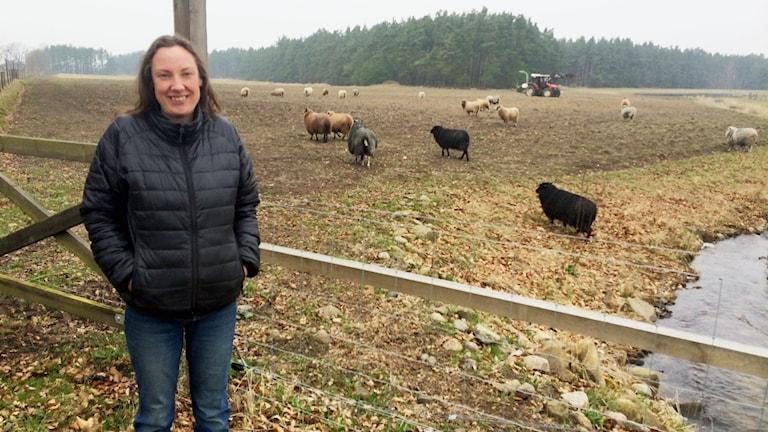 Kvinna i svart dunjacka och jeans står framför ett stängsel vid en fårhage. I bakgrunden syns får.
