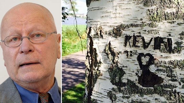 Sven-Erik Alhem rättsexpert anser att man inte har någon stödbevisning i fallet Kevin.