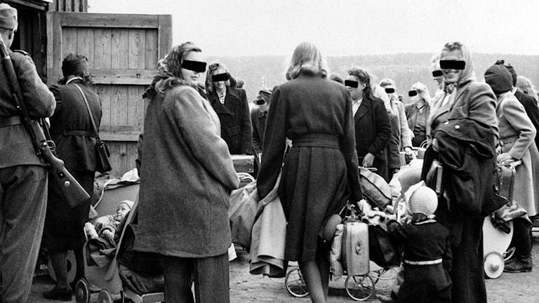 """Många """"tyskerjenter"""" förlorade sina norska medborgarskap. Här några av de som tvingades lämna Norge 1946."""