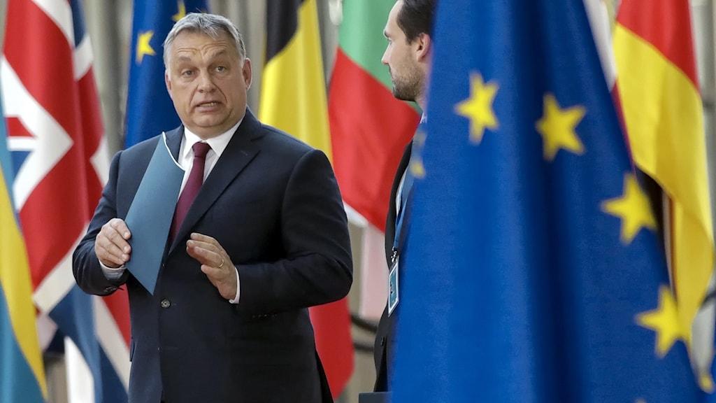 Fidesz partiledare Viktor Orbán.