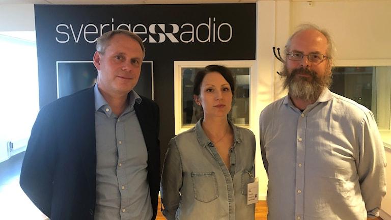 Magnus Lindgren, Åsa Stridh och Peter Lindström.