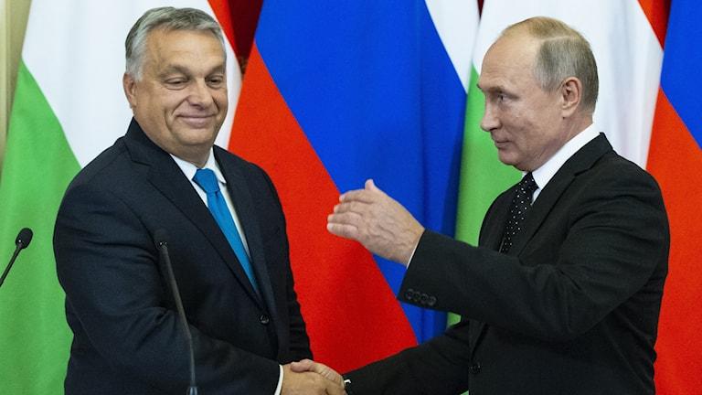 Viktor Orban och Vladimir Putin.