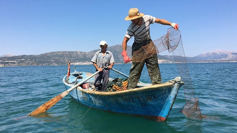I början av åttiotalet fiskades mer än 3000 ton kräftor här varje år, men 1985 drabbades sjön av kräftpest och kräftorna dog. De senaste åren har kräftbeståndet börjat återhämta sig.