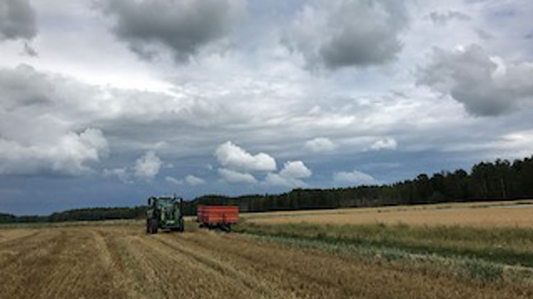 Mats Wikner, jordbrukare