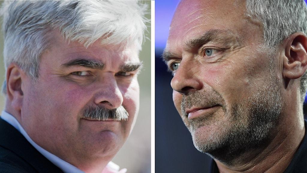 Håkan Juholt (S) och Jan Björklund (L) är två exempel på politiker som blivit ambassadörer.