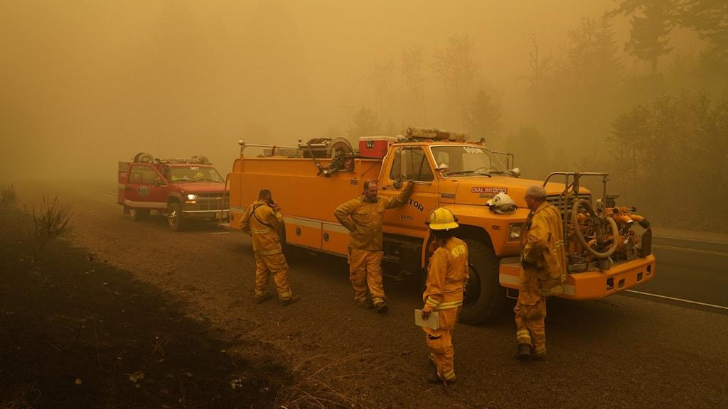 Bränderrna på USA:s västkust.