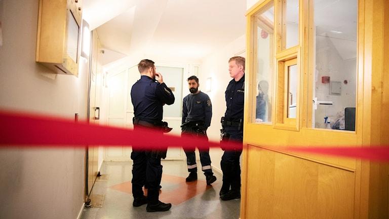 TERRORMISSTÄNKTA RÄTTEGÅNG