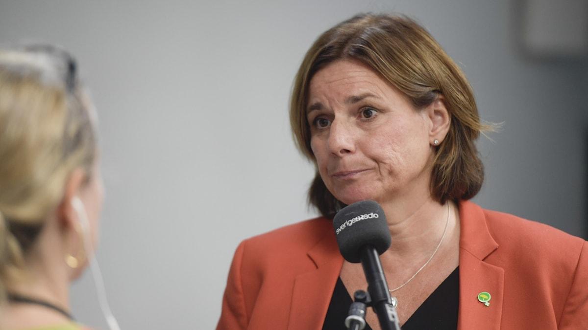 Isabella Lövin