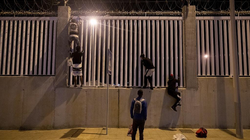 Hög mur. Hitom muren, flera pojkar med ryggen vända mot kameran.