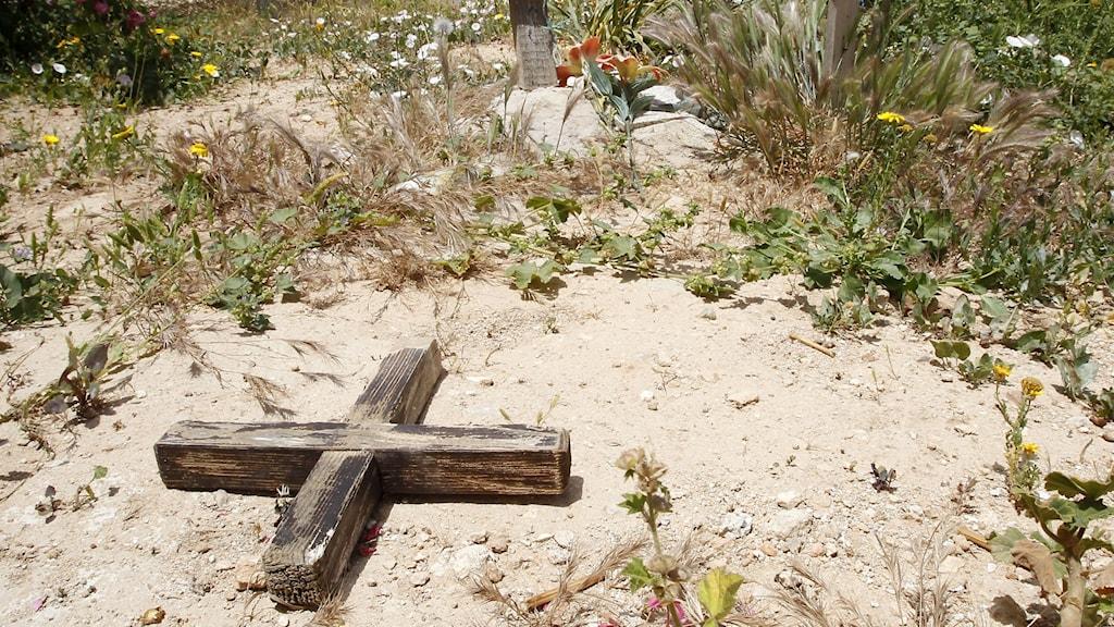 Ett kors markerar en grav av en namnlös migrant på Lampedusa.