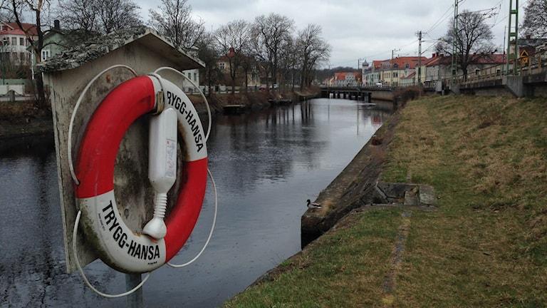 Ronneby-ån har förhöjda halter av PFAS, eftersom det finns kvar i marken och förs vidare dit via bäckar.