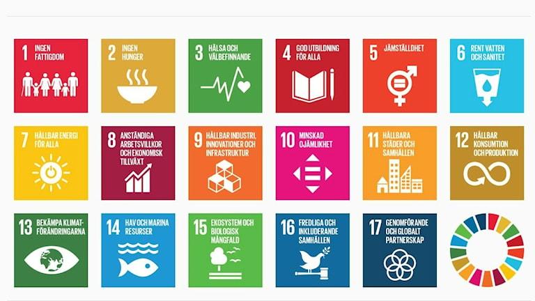 FN:s 17 globala mål